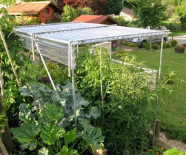 Build a Shelter for Growing Tomatoes