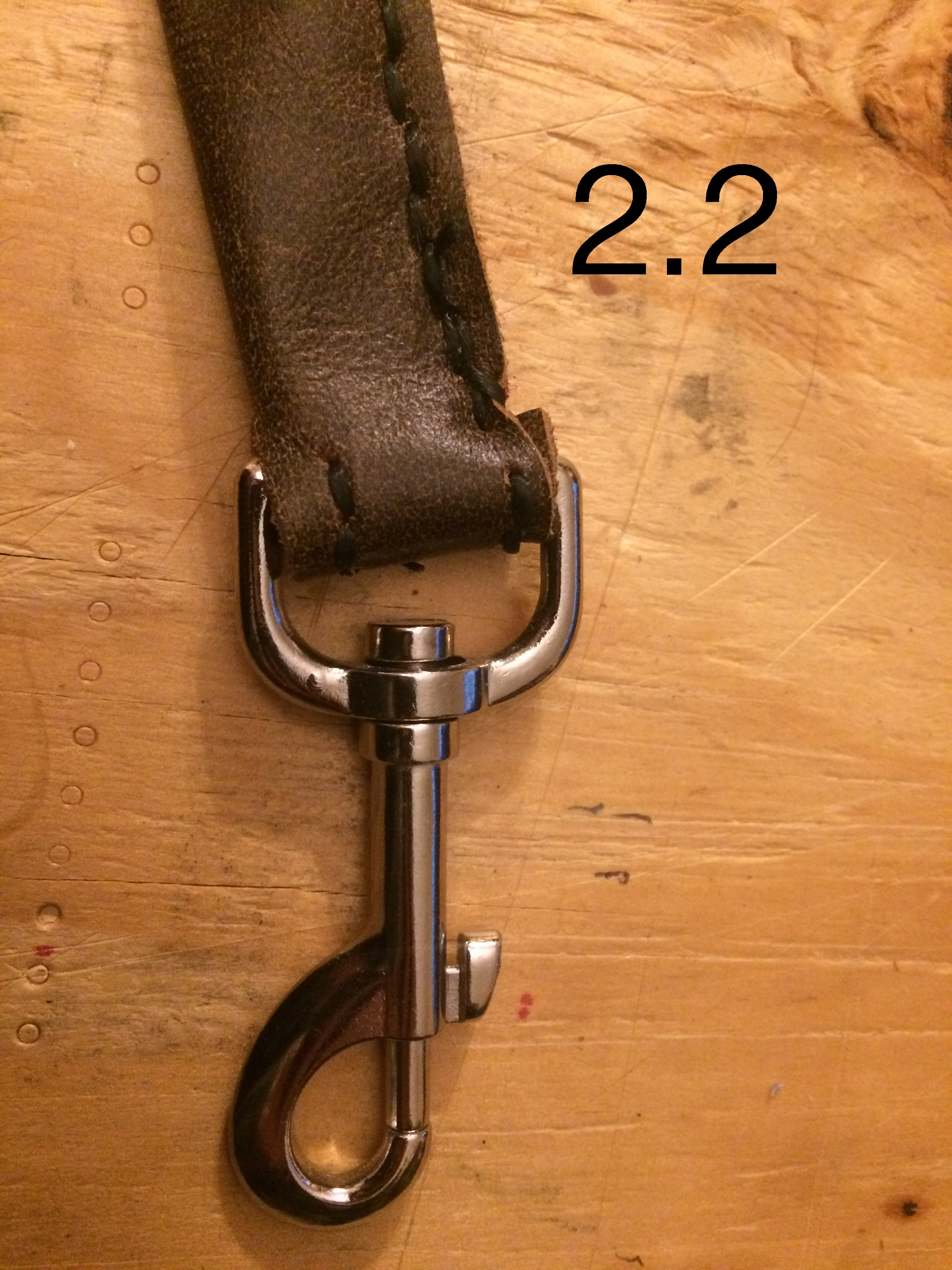 Picture of Straps Continued: Lower Portion of Strap & Handle