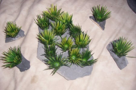 Realistic Breeding Grass