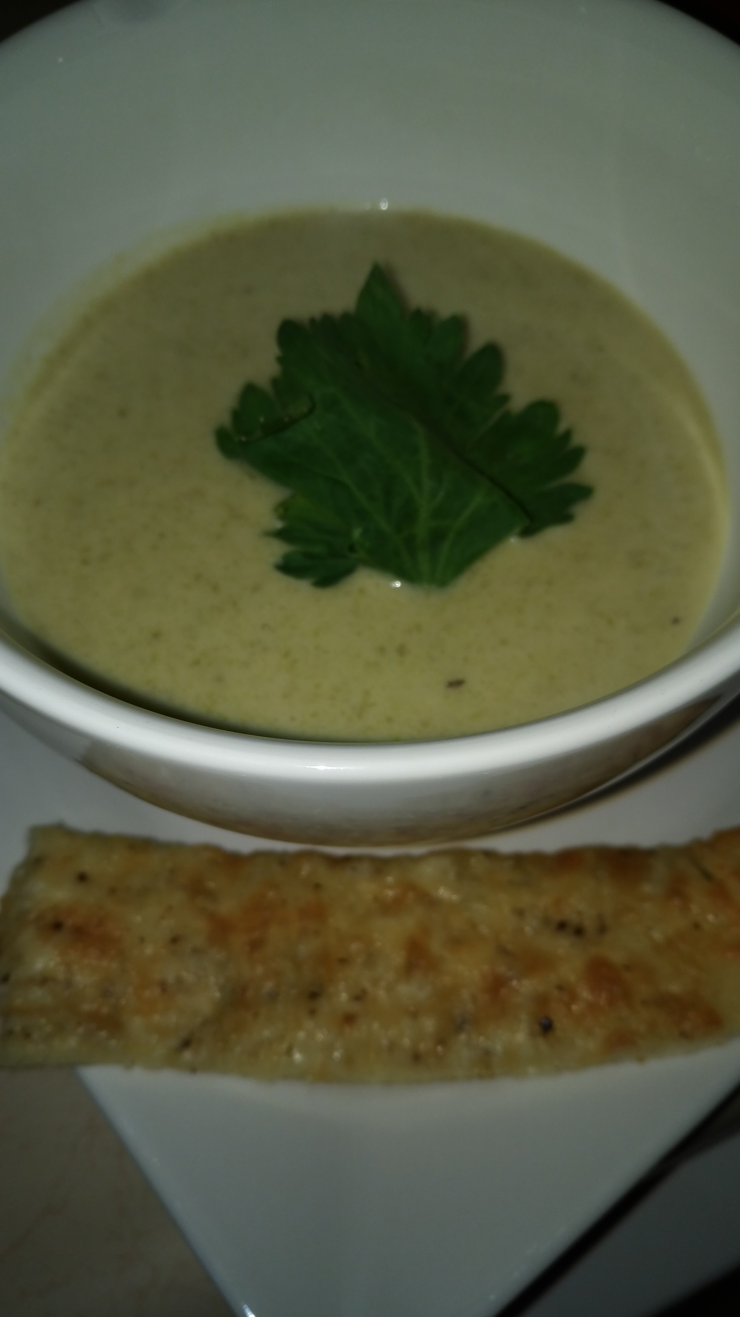 Picture of Absolutely Amazing Cream of Celery Soup