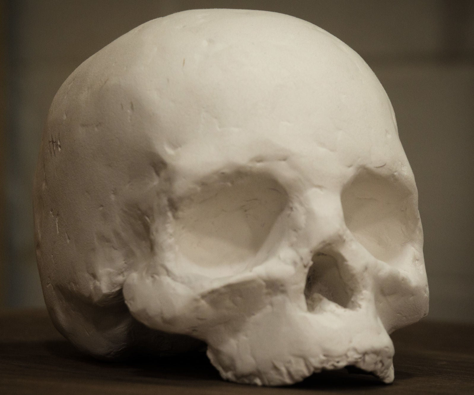 Laser Cutting Cardboard To Make A Human Skull 14 Steps With Pictures
