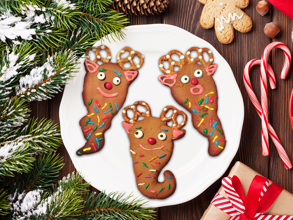 Picture of Rare Yool Gingerbread Cookie