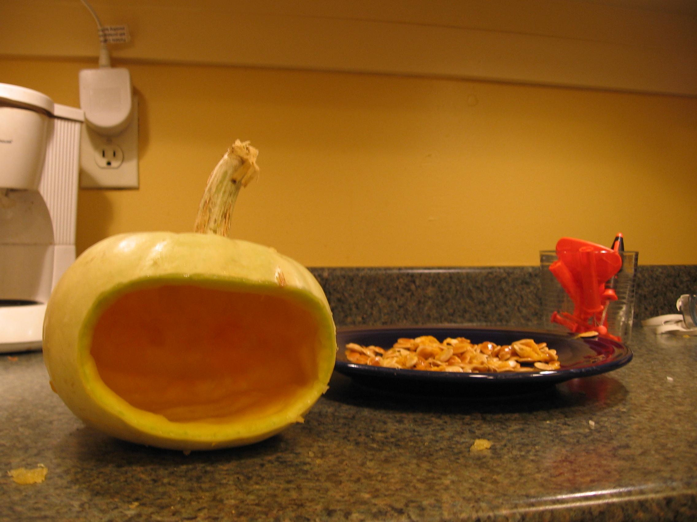 Picture of Pumpkin Bird Feeder