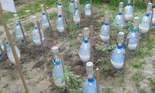 Solar Irrigator Using Saline Water