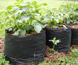 Tater Totes: Potato Grow Bags