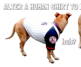 Alter Human Shirts to Fit a Dog's Body