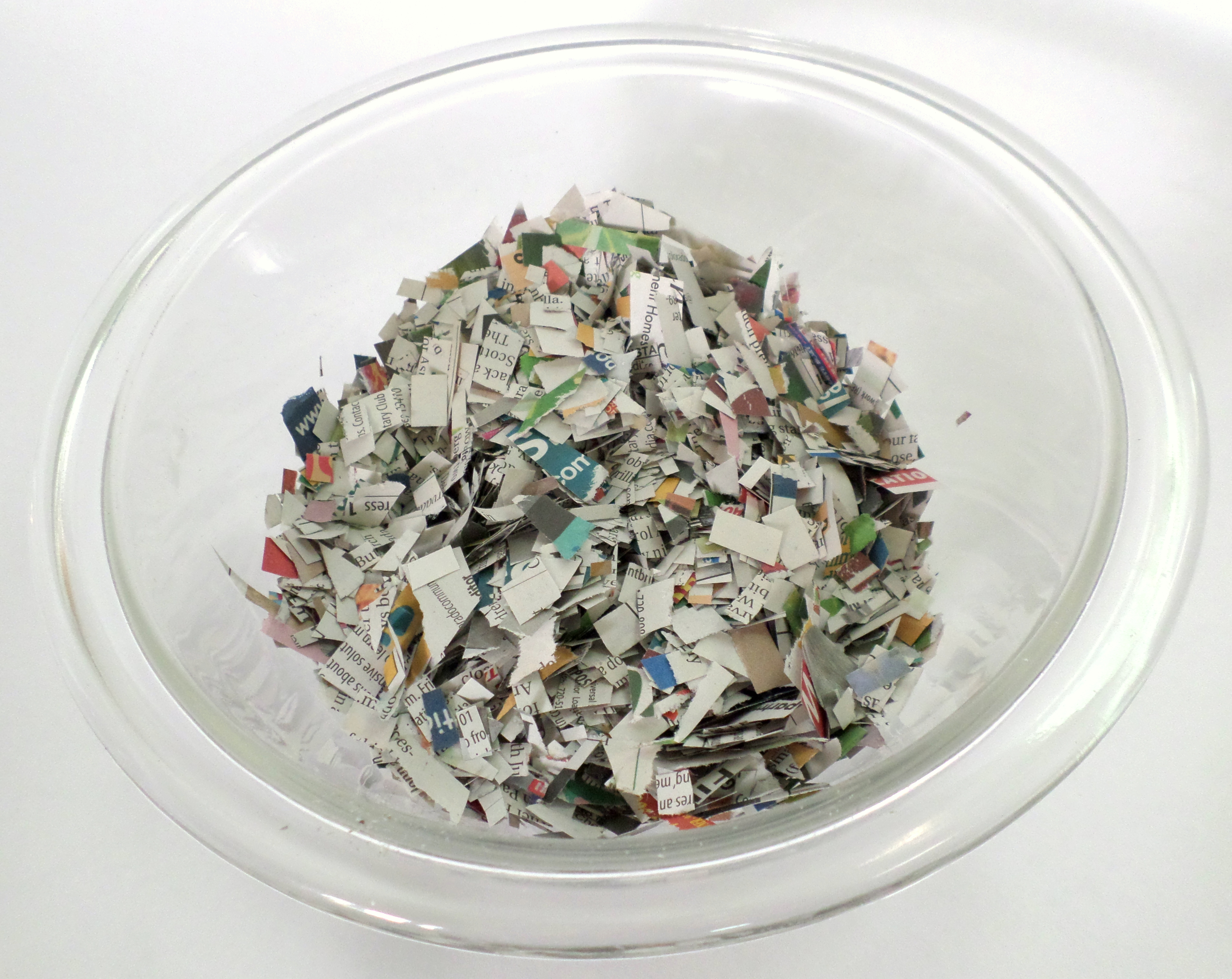 Picture of Add the Green Paper Mache Pulp