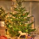 Take a nice HDR-Image of your Christmas Tree