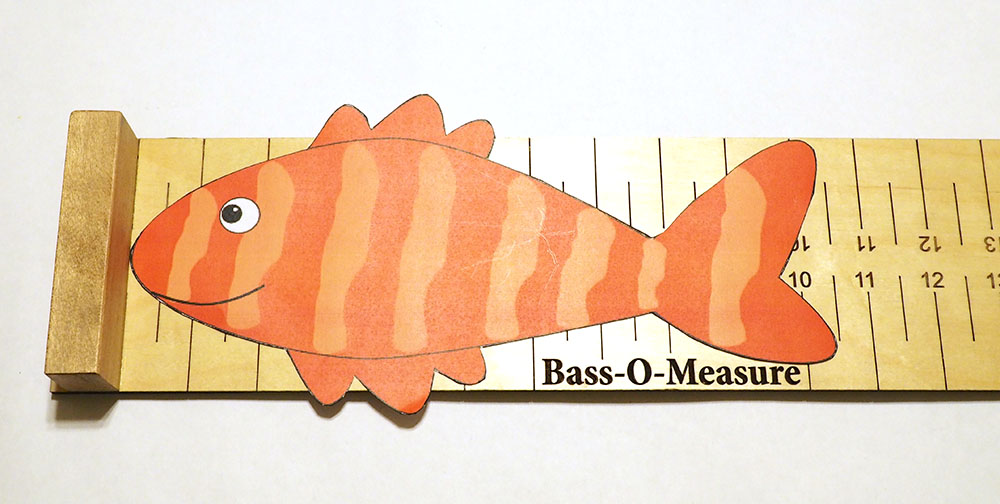 Picture of Bass-O-Measure Ready for Use