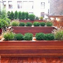 NYC Landscape Design Guide