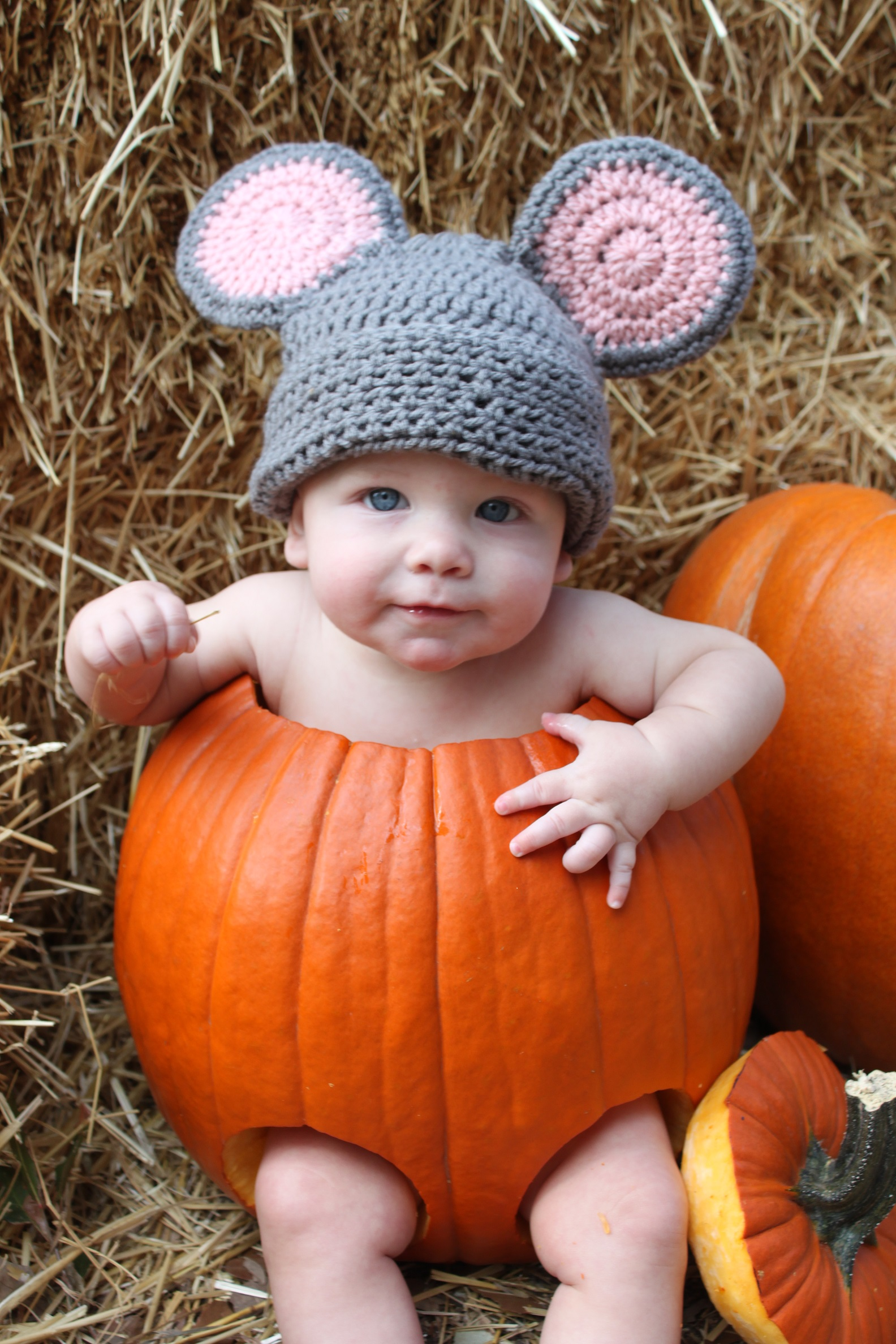 Picture of Lil' Punkin