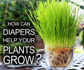 Diapers Help Your Plants Grow!