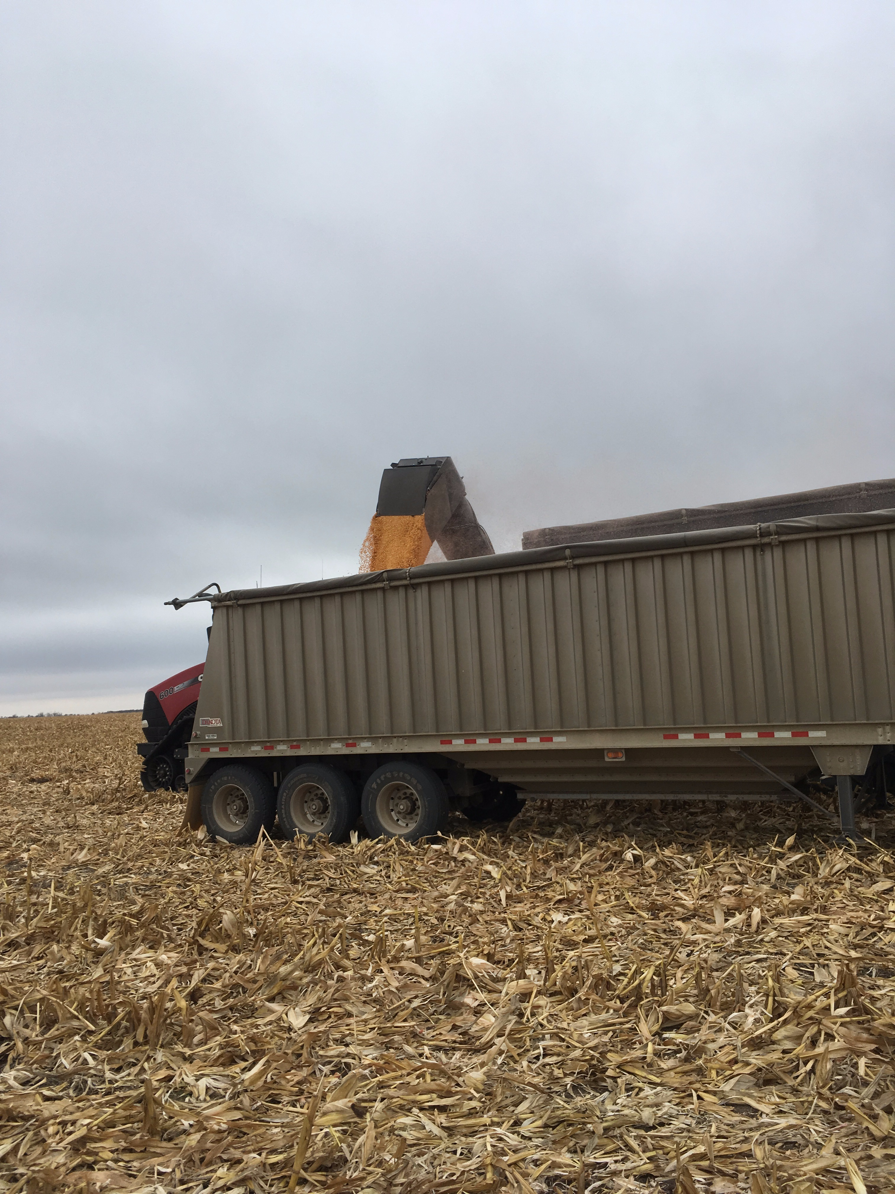 Picture of Grain Cart to Trailer