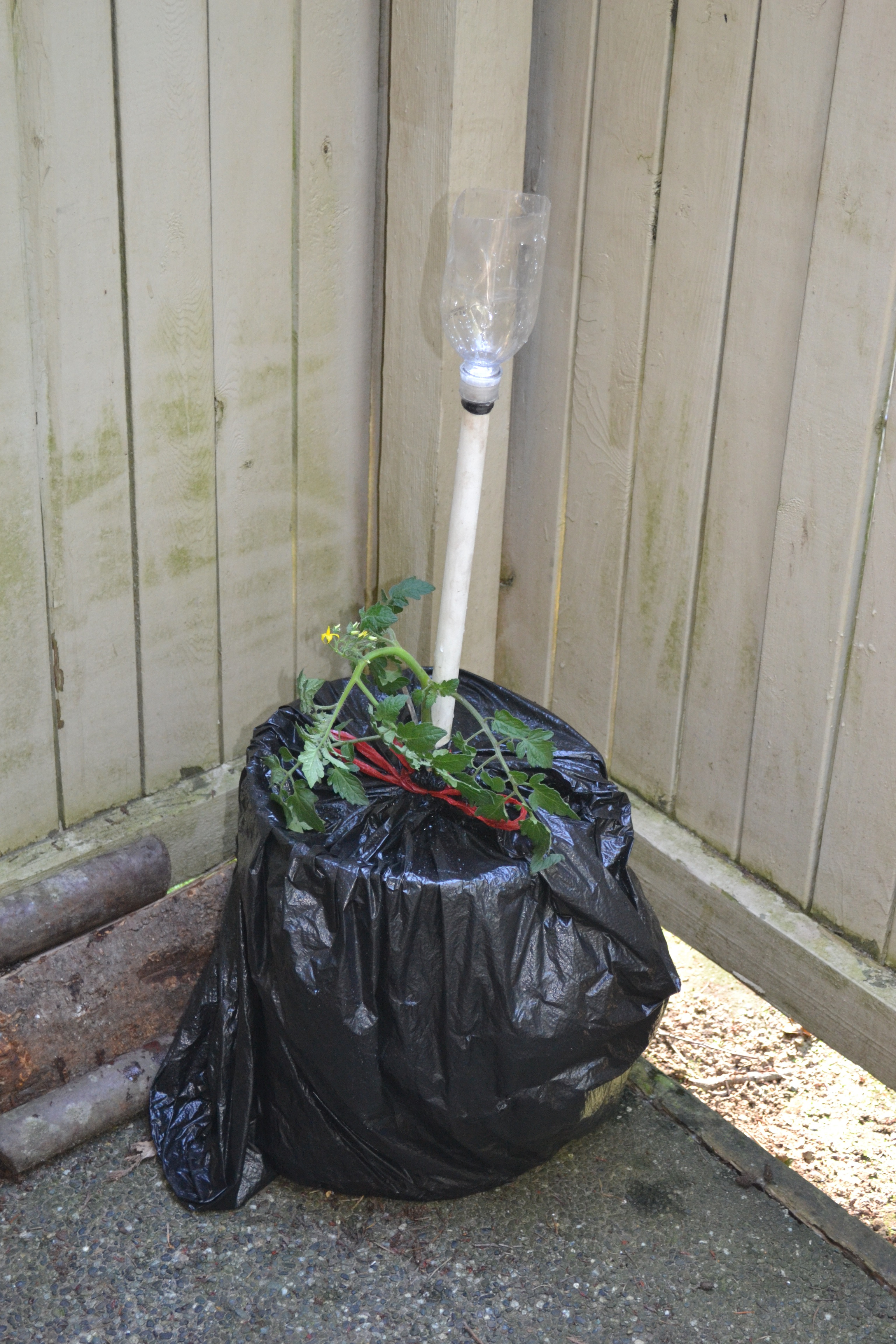 Picture of Earth Bucket