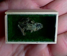 Miniature Shadowbox
