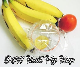 DIY Fruit Fly Trap