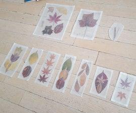 Wax Paper Pressed Foliage Bookmarks