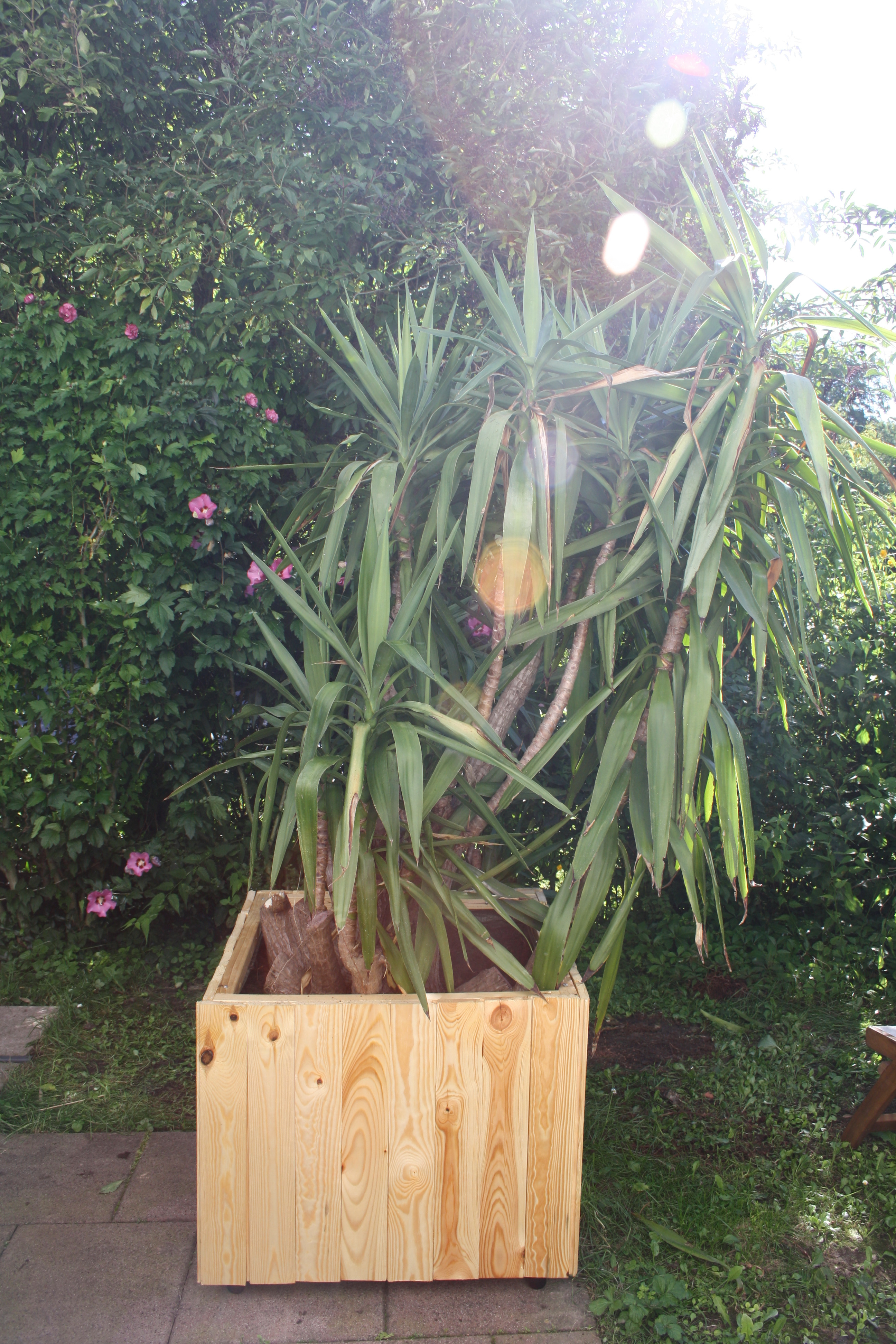 Picture of Wood Planter