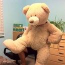 Teddy Bear Costume