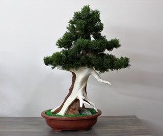 Artificial Juniper Bonsai
