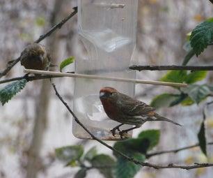 Feed the Birds - Waterbottle Bird Feeder