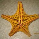 Parabolic Pencil Star