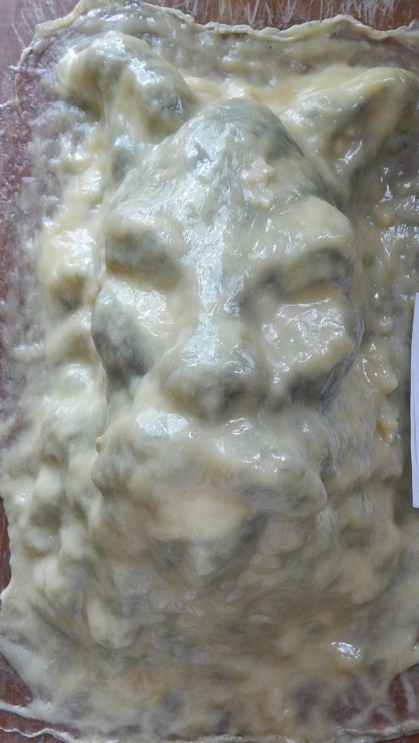 Picture of Latex Mold.