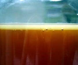 Kombucha Brewing Made Easy Video Link