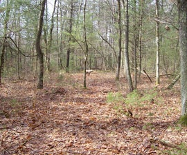 3 Practice Tips to Hunt Deer With a Bow