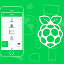 Open the gate, wicket or door with your Smartphone and Raspberry PI