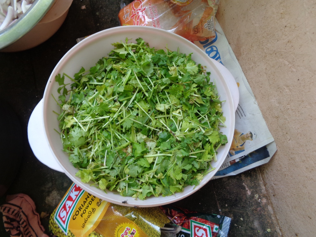 Picture of Ingredients, Finely Chopped / Sliced
