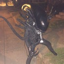 Alien Xenomorph Kids Costume (long Version)