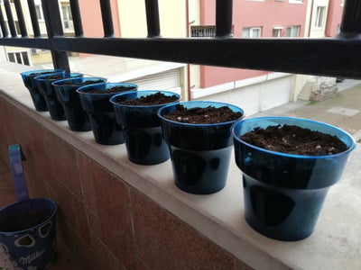 Place a Soil