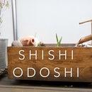 DIY Shishi Odoshi