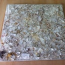 Oyster Shell Tiles
