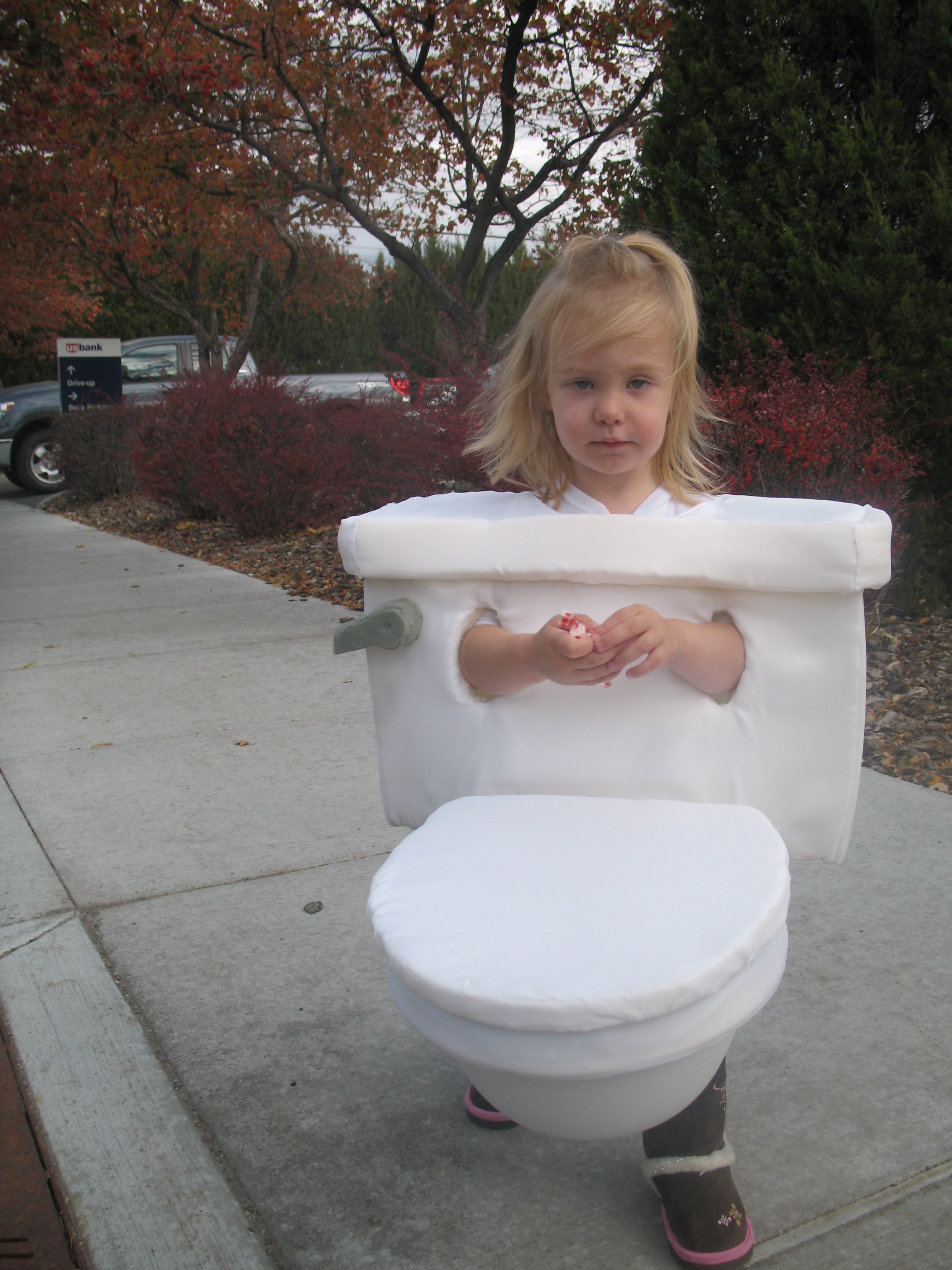Picture of Toilet Costume