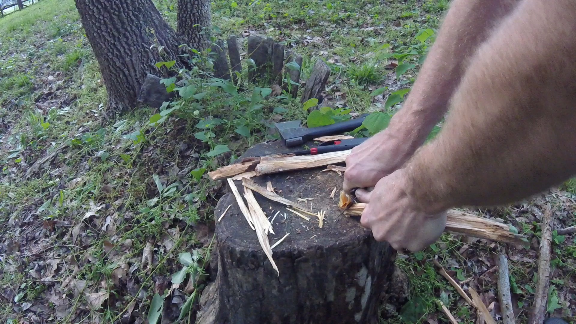 Picture of Using Fatwood
