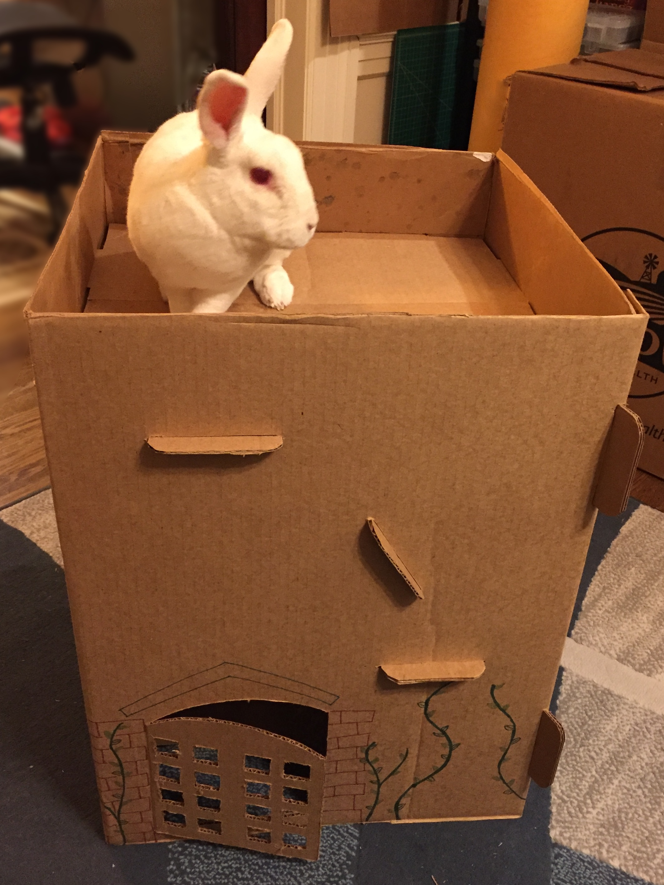 Picture of Rabbit Cottage From a Hay Box