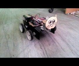 Autonomous Roaming Cat