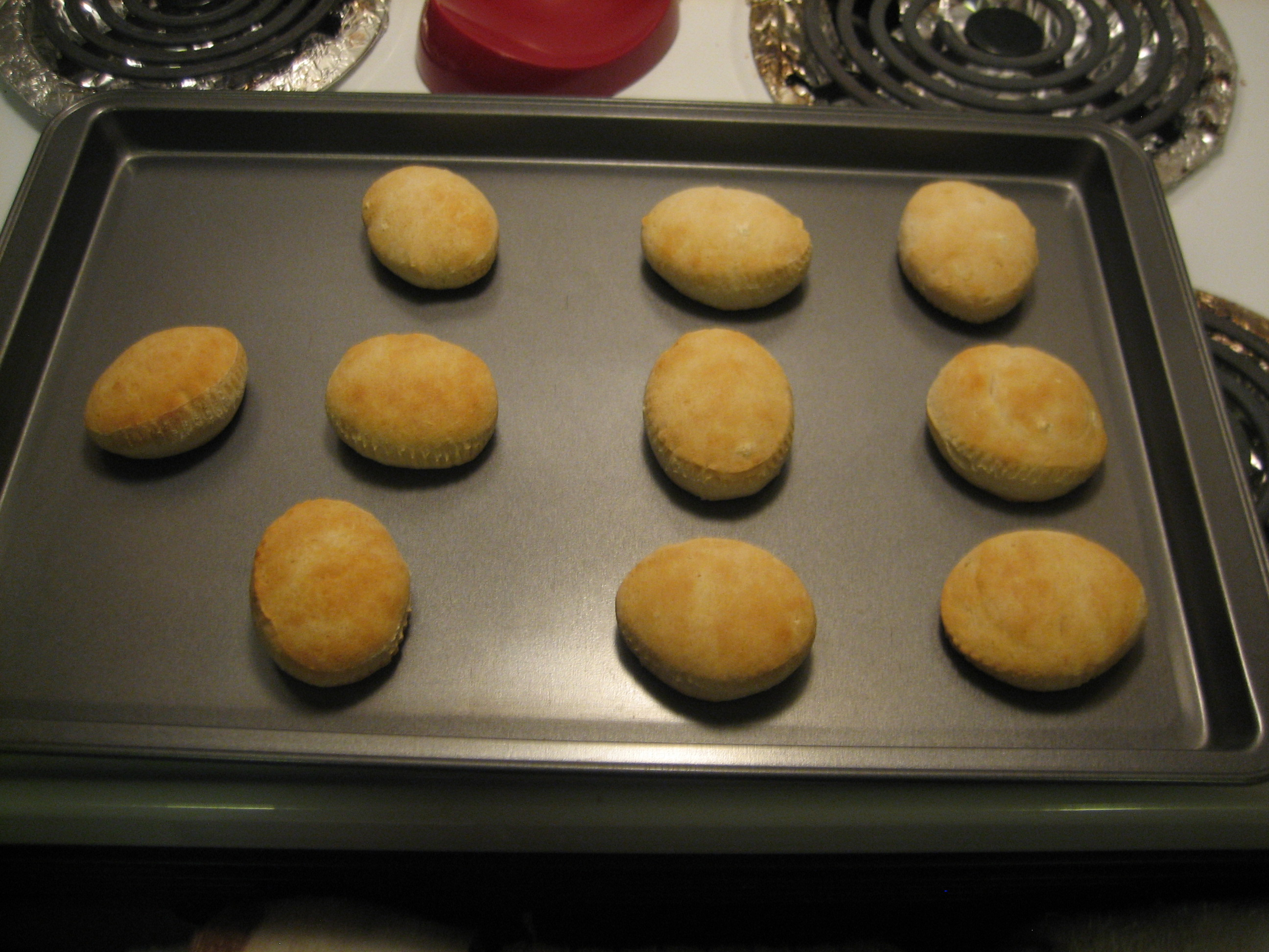 Picture of More Biscuits