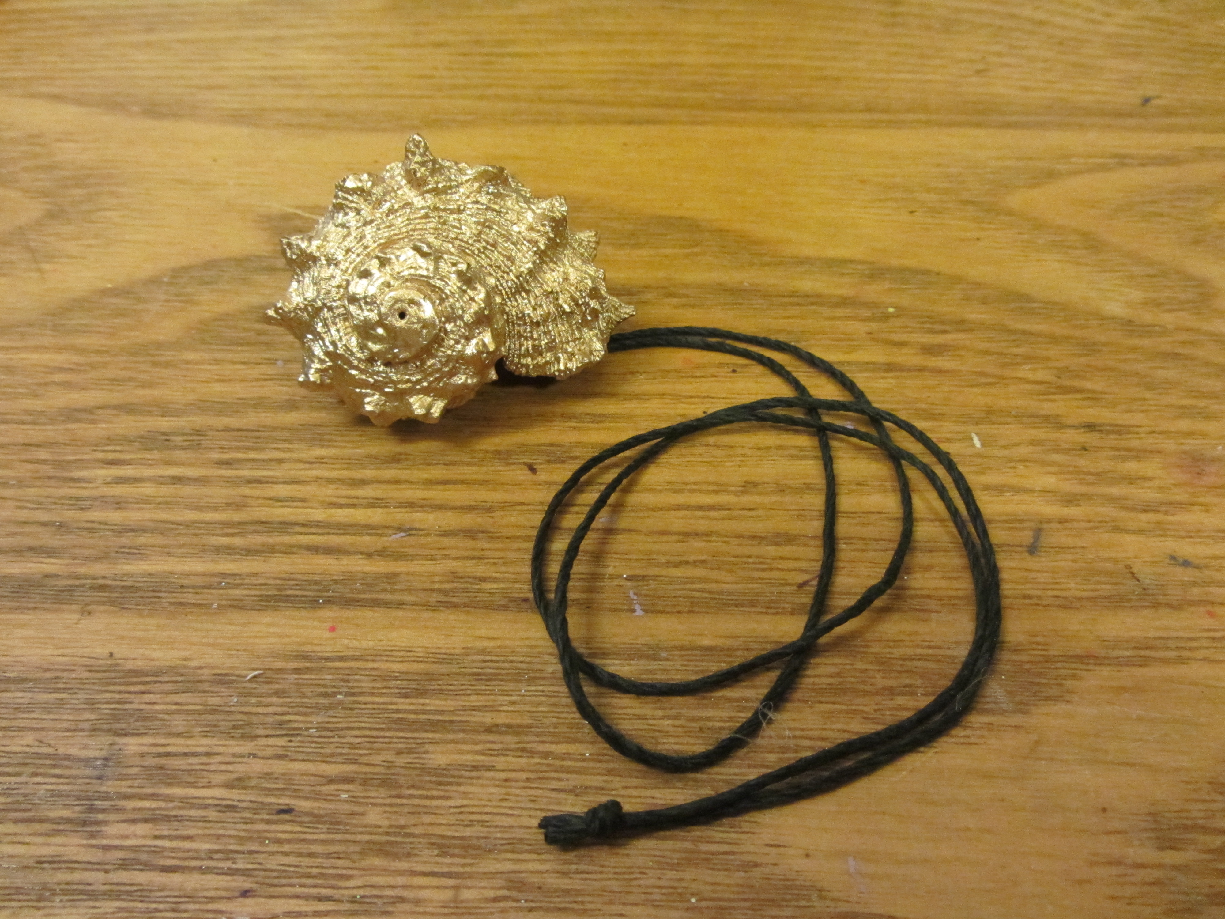 Picture of Attach to the Cord
