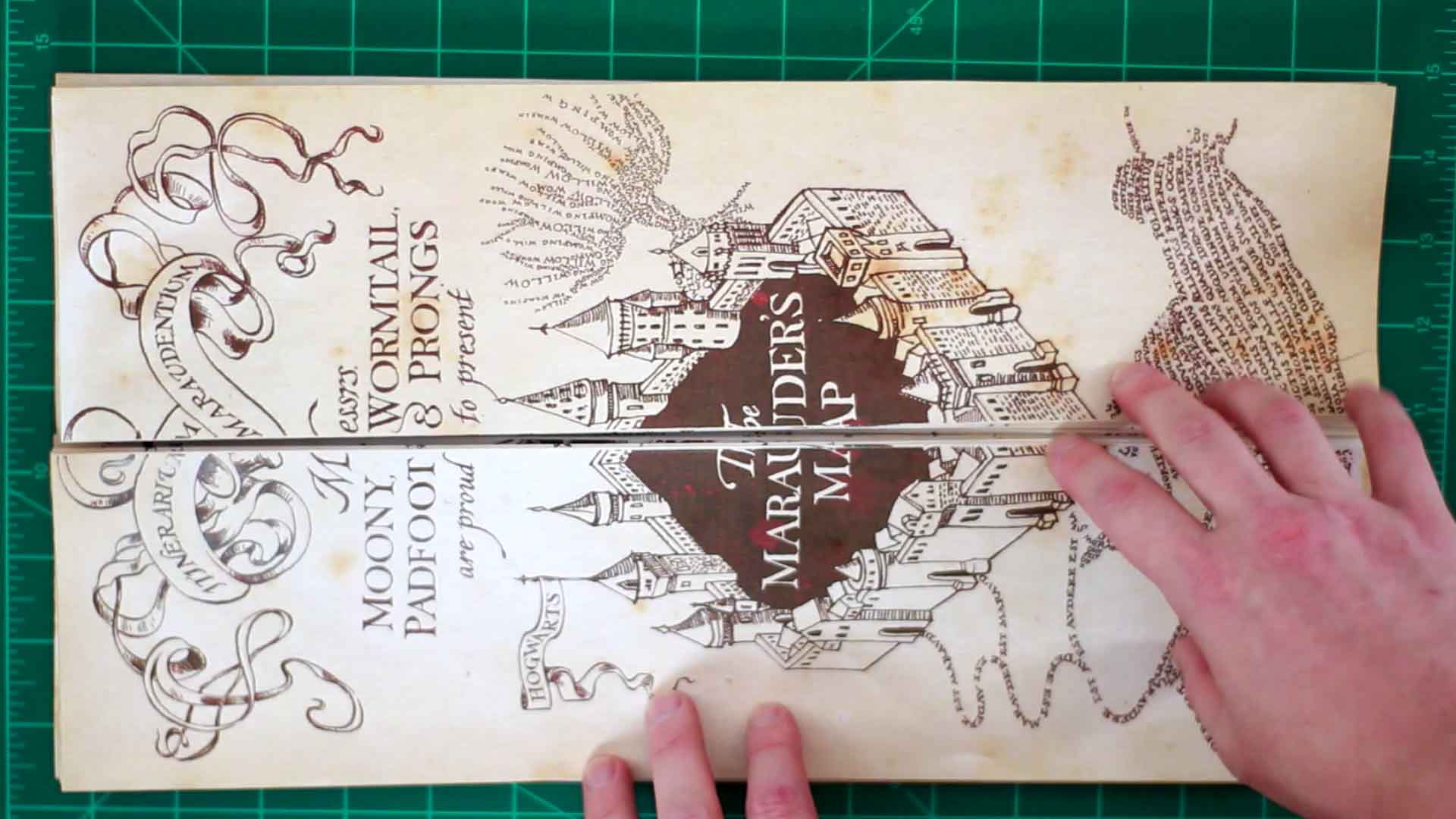 Picture of Folding the Map and Gluing on the Ends