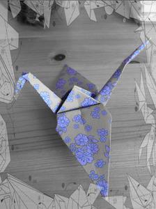 Origami Crane Instruction