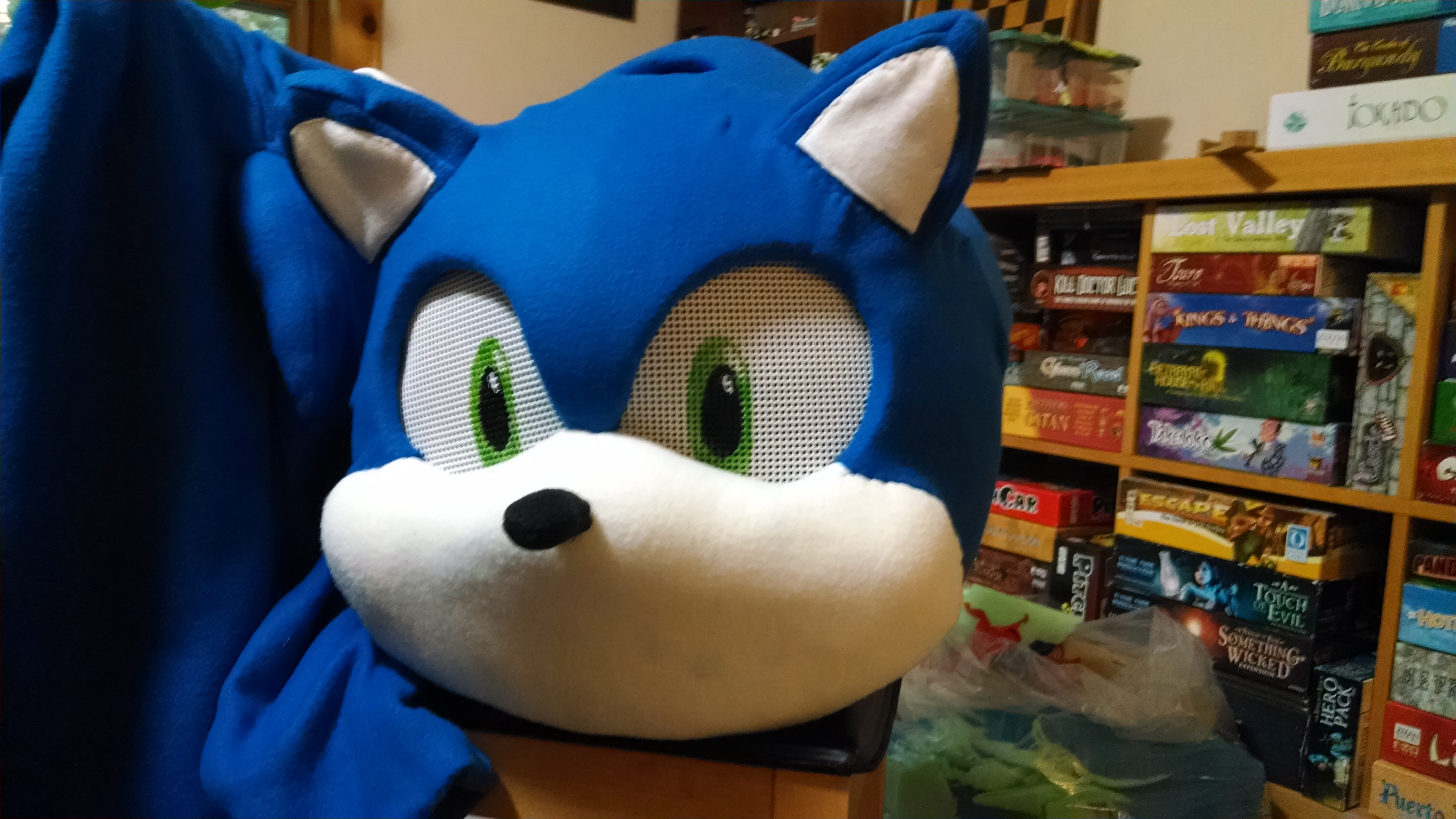 Picture of Sonic's Head: Eyes, Nose and Mouth