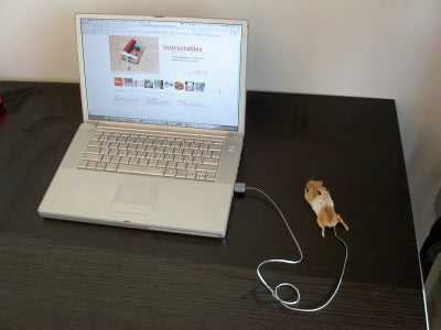 Completed Mouse Mouse!