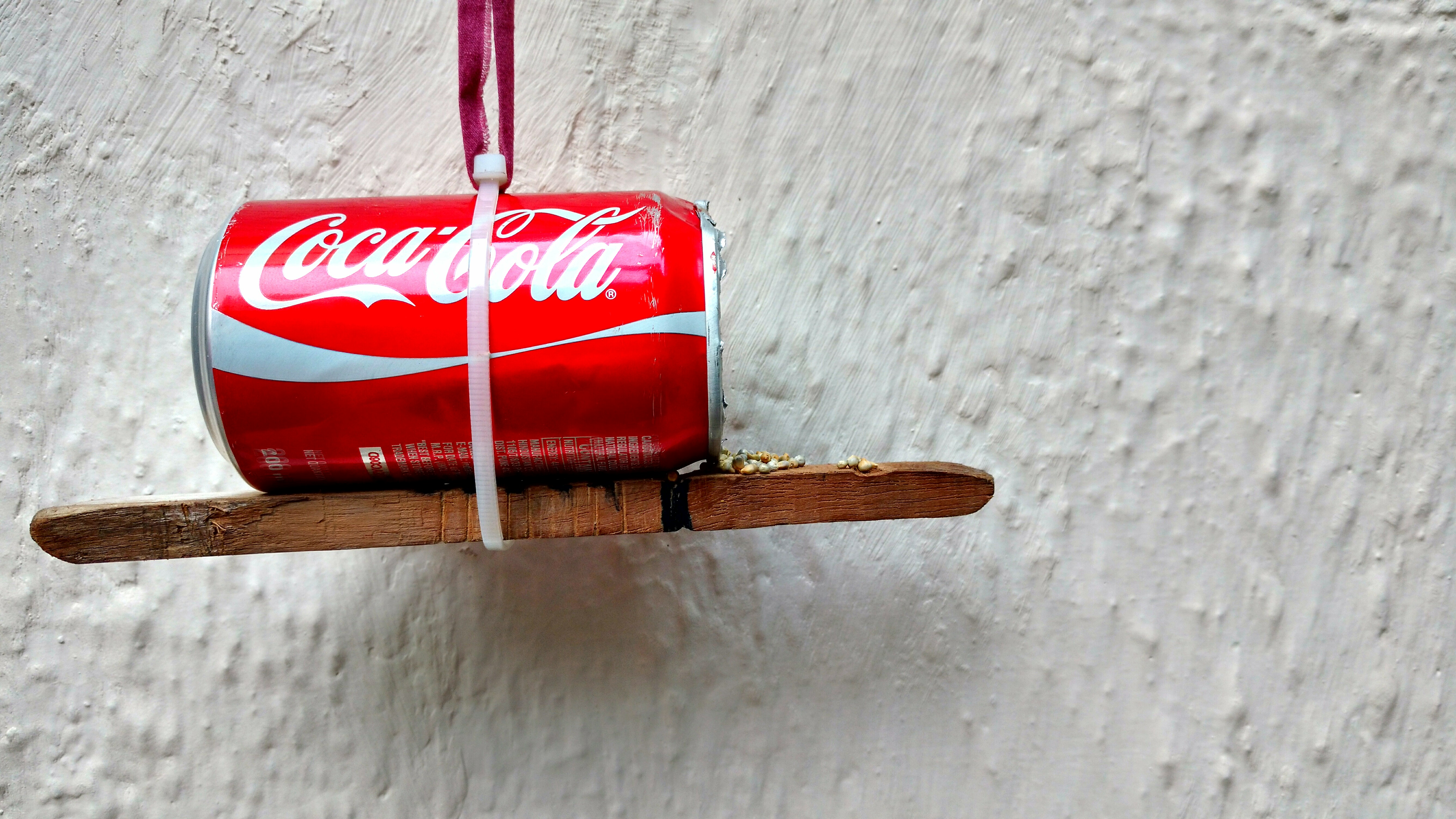 Picture of DIY Birdhouse: Let Birds Beat the Heat This Summer