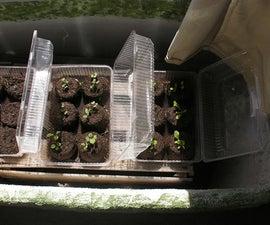 Make Super Cheap Seed Starters