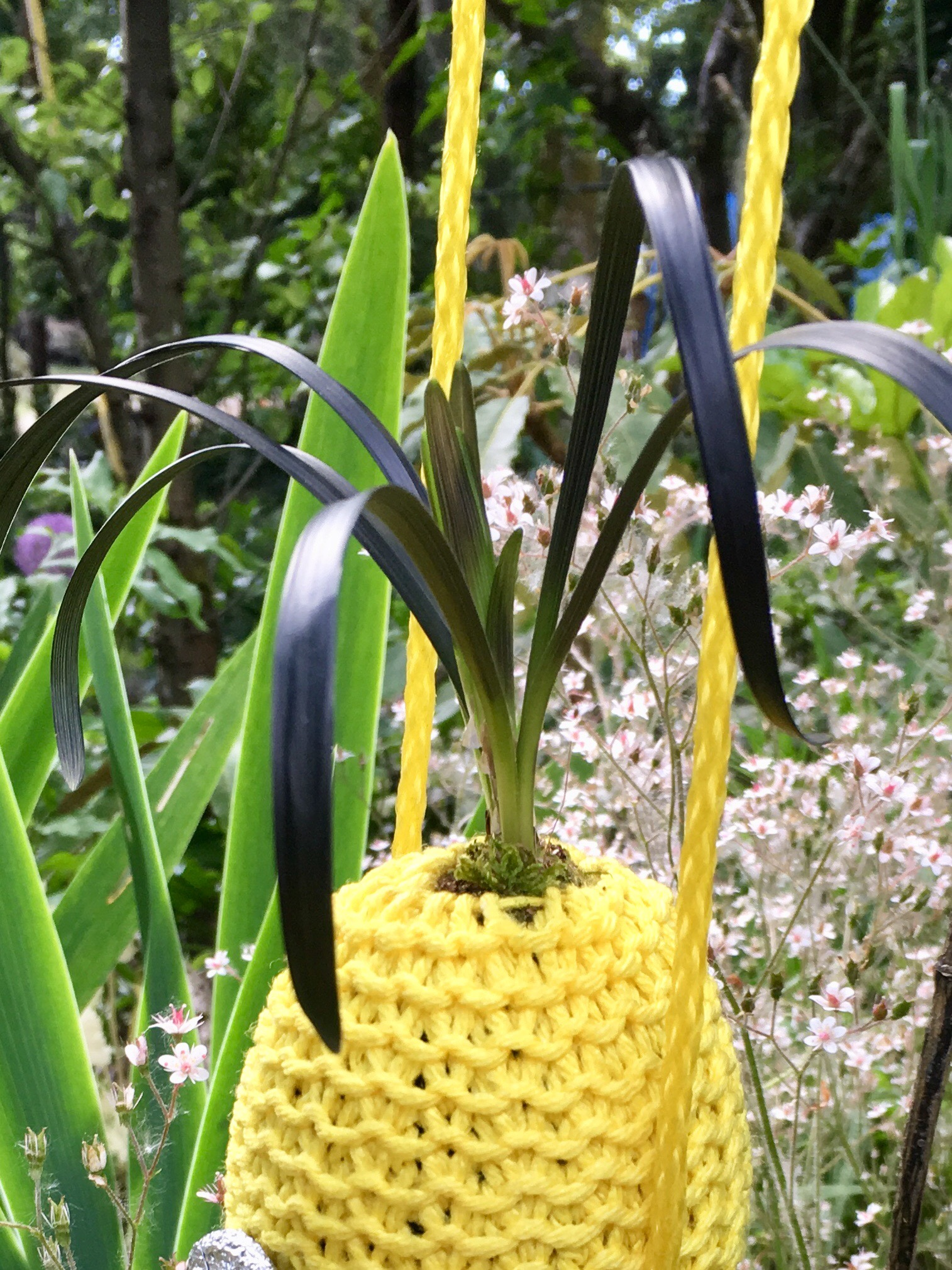 Picture of Hanging Minion Planter Bag With Growing Hair.
