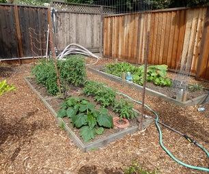 An Urban Farm
