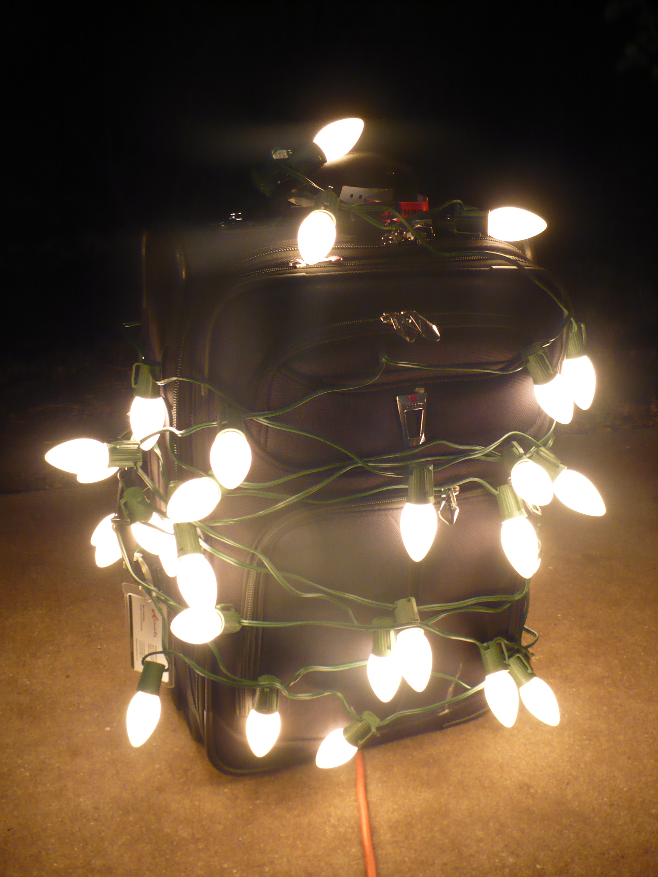 Picture of Kill Bedbugs With Your Christmas Lights